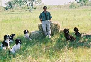 martin bell dog trainer